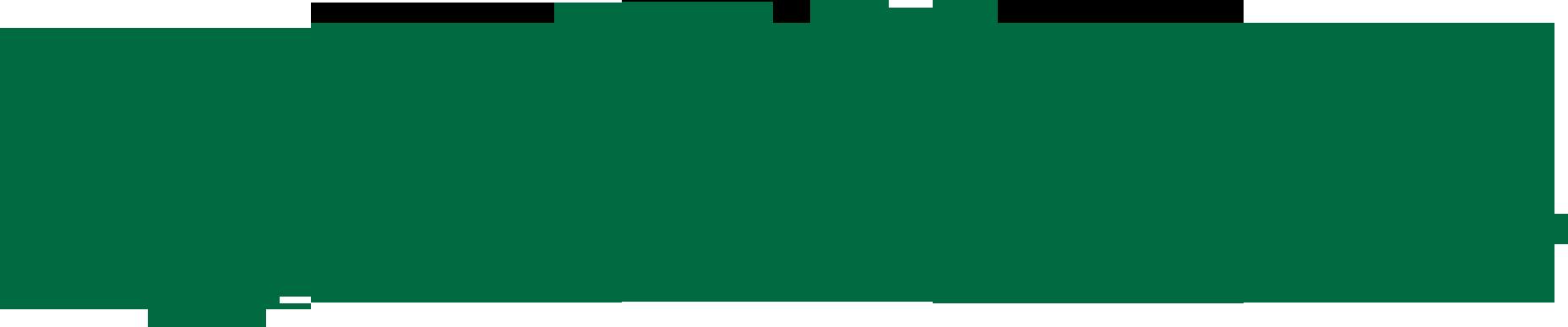 Limericks Irish Pub